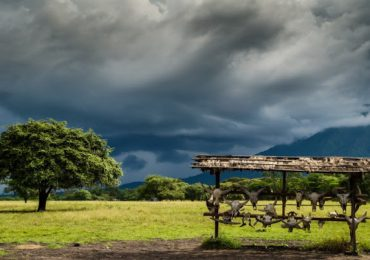 8 Tempat Rekreasi Alam Di Banyuwangi Cocok Untuk Piknik